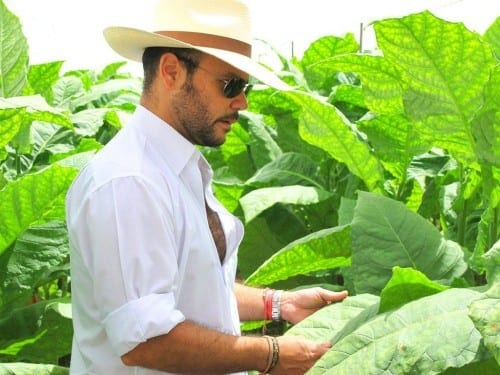 nestor plasencia jr at jalapa tobacco leaf