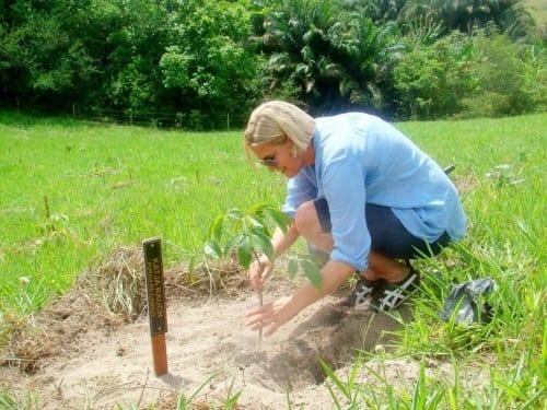 brazil reconcavo salvador bahia katja rauch planting tree