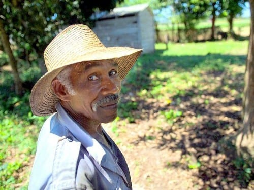 one day cuban tobacco farmer estanislao acosta