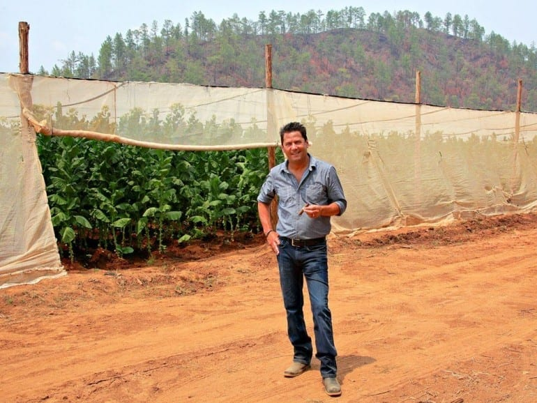 cao cigars master blender rick rodriguez tobacco field