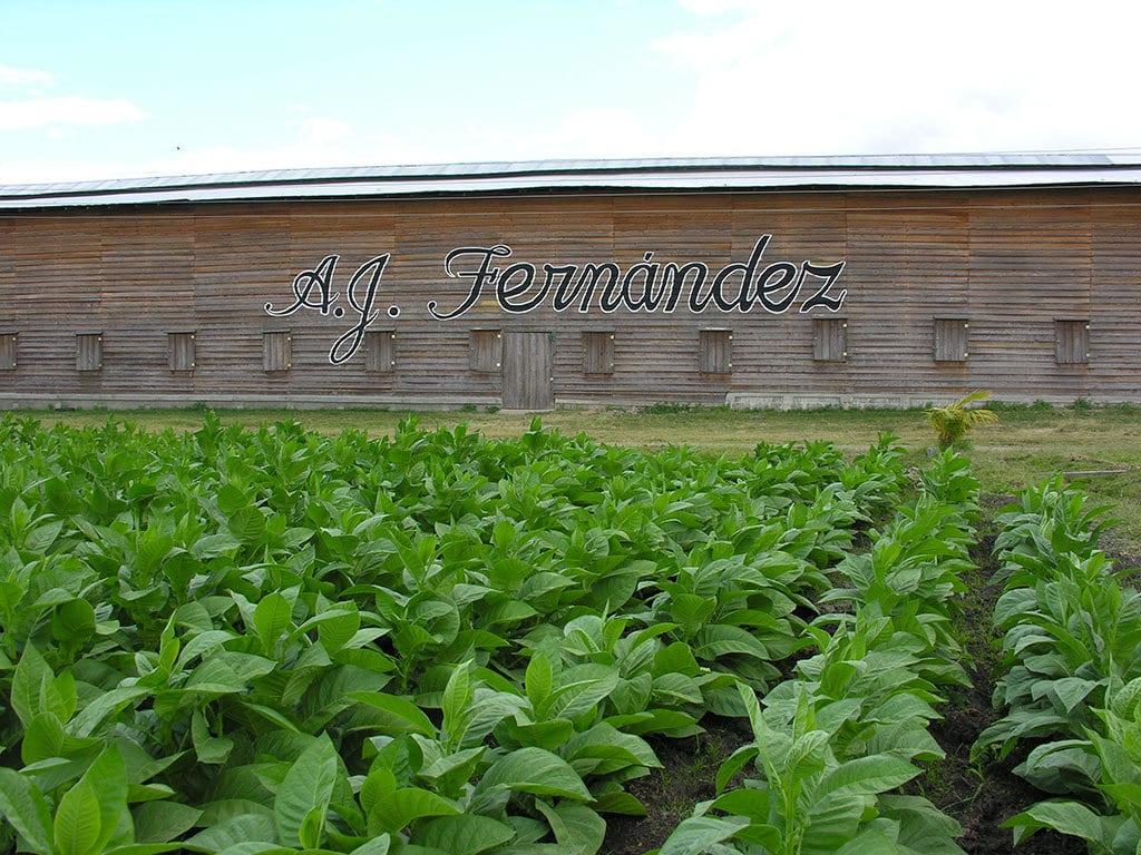 AJ Fernandez Barn Nicaragua