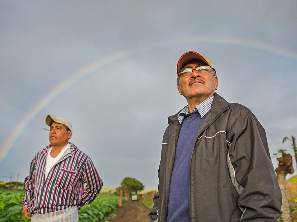 felipe lopes meza turrent farm rainbow