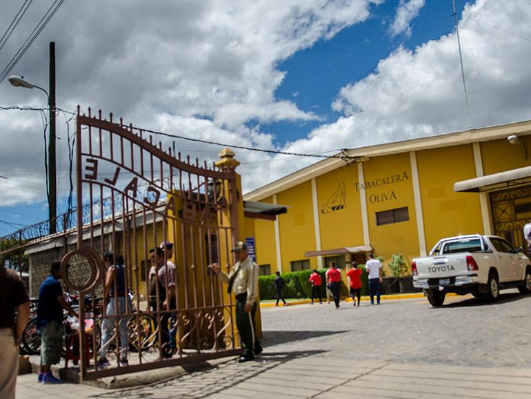 OIliva Cigar Factory Estelí Nicaragua